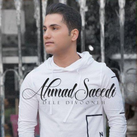 153036957487116707photo 2018 05 20 21 04 05 - دانلود موزیک ویدئو احمد سعیدی به نام دل دیوونه