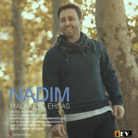 nadim malakeye ehsas 2018 11 28 17 57 16 - دانلود موزیک ویدئو ندیم به نام ملکه احساس